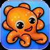 章魚 Octopus
