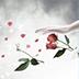 白裙美女桌面主题—魔秀