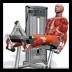 3D健身動畫教程