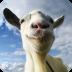 模拟山羊 免验证版