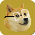 神烦狗上月球 Doge Dodge Plus V2.5