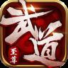 武道至尊-icon