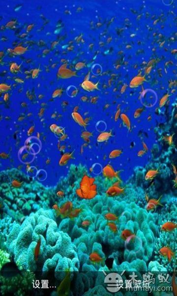 3d海底世界动态壁纸 v2.