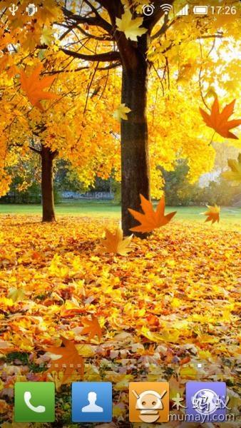 唯美的秋天壁纸,秋天真实的自然景象.