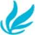 维文浏览器 V6.1