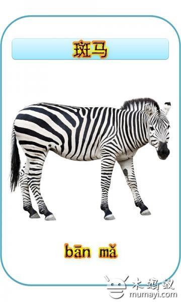 儿童动物识图 1.10图片