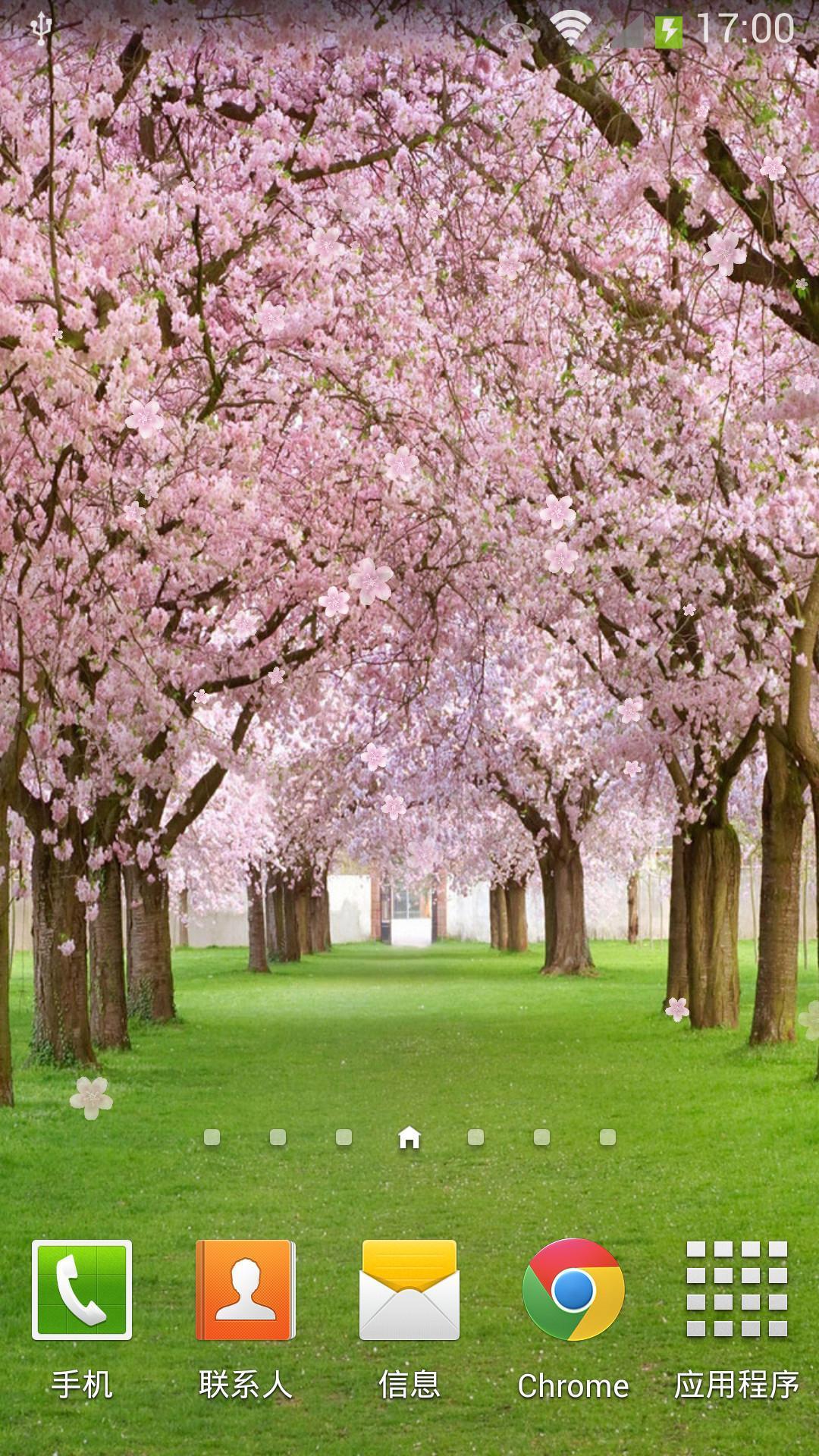 桃花动态壁纸 -- 漂亮的桃花树背景图片 -- 飘落的桃花效果 --触屏