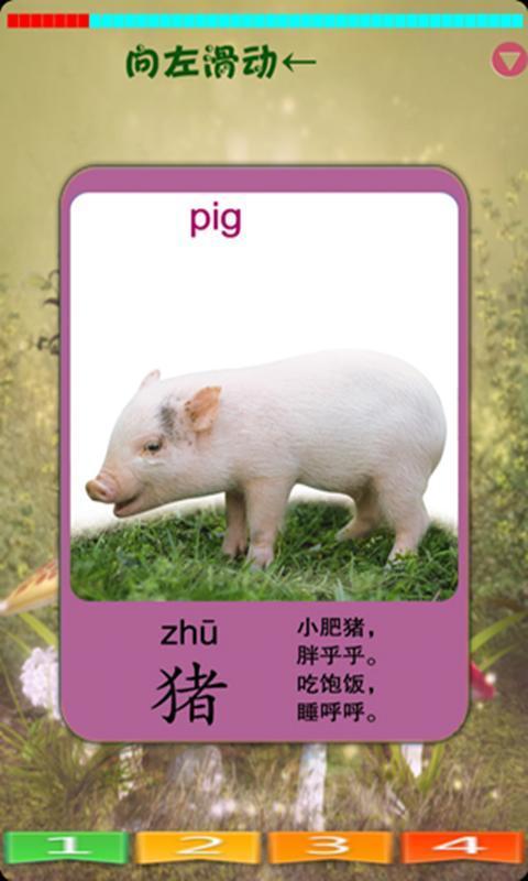 宝宝认识动物下载_宝宝认识动物手机版下载
