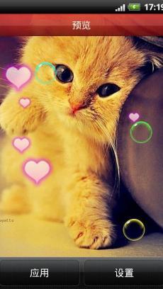 可爱小猫咪动态壁纸 v4.6