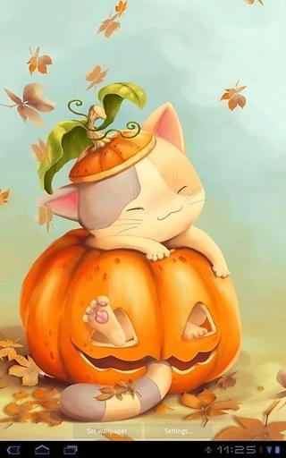 南瓜小猫是一个可爱的动画动态壁纸功能下降秋天的树叶和一只猫,响应