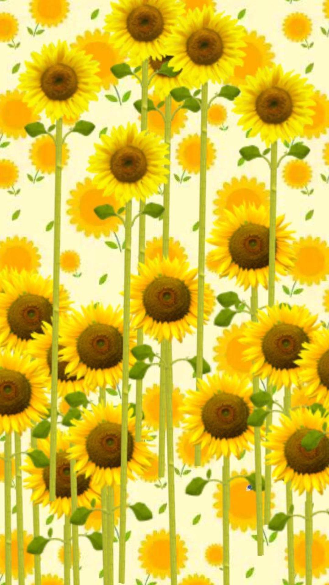 向日葵主题动态壁纸下载