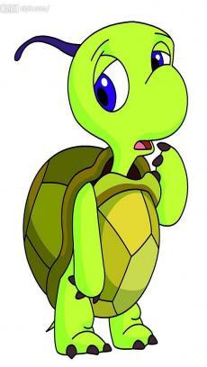乌龟头像图片大全