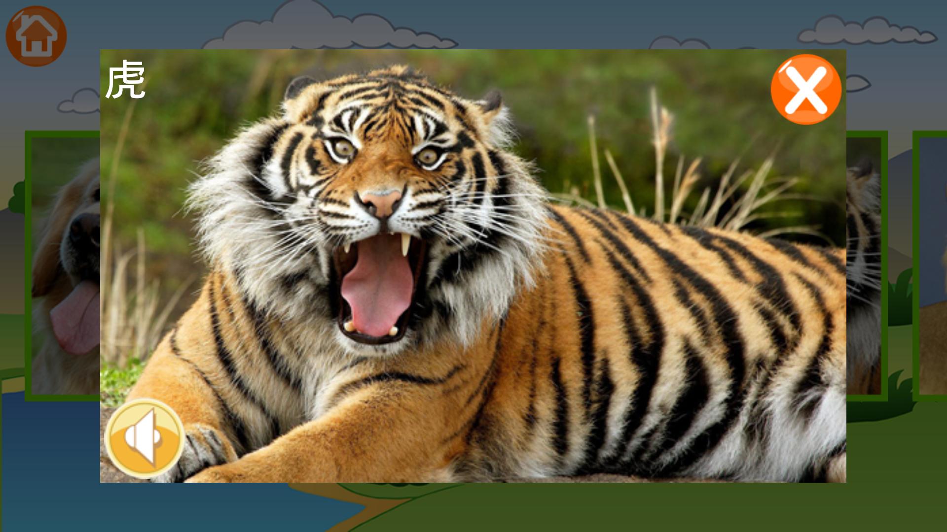 动物园收录了33种世界各地的动物和中文发音,让宝宝喜欢上可爱的动物.