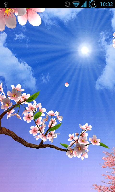 樱花3d动态壁纸 v1.41