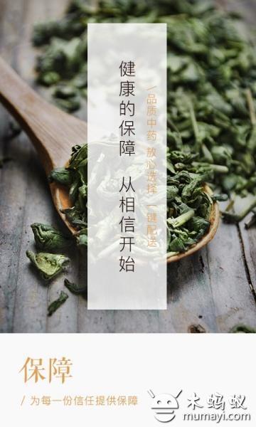 冬日中医 V4.2