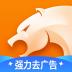 猎豹浏览器 V5.22.0