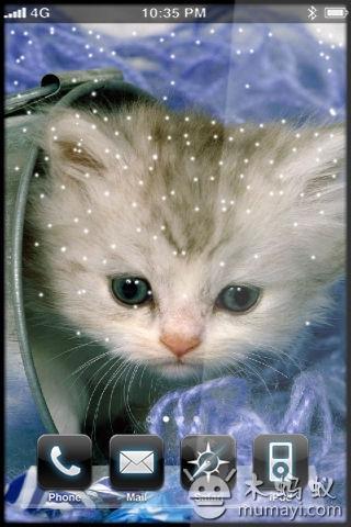 可爱猫咪动态壁纸v1