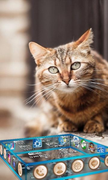 壁纸 动物 猫 猫咪 小猫 桌面 360_600 竖版 竖屏 手机