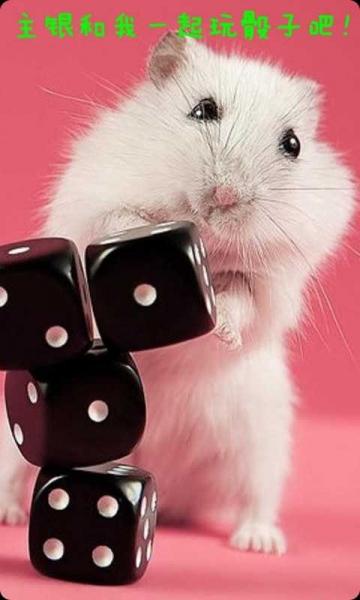手机宠物可爱小仓鼠