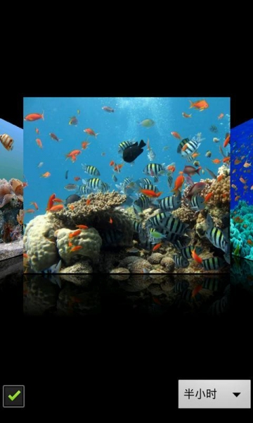 3d海底世界动态壁纸下载_3d海底世界动态壁纸手机版_.