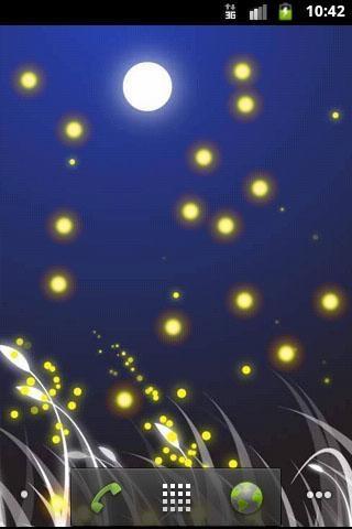 萤火虫动态壁纸
