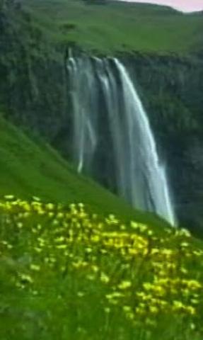 壁纸 风景 旅游 瀑布 山水 桌面 287_480 竖版 竖屏 手机