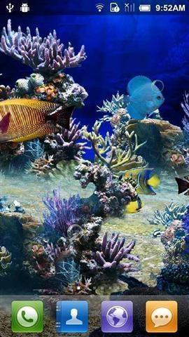 壁纸 海底 海底世界 海洋馆 水族馆 270_480 竖版 竖屏 手机