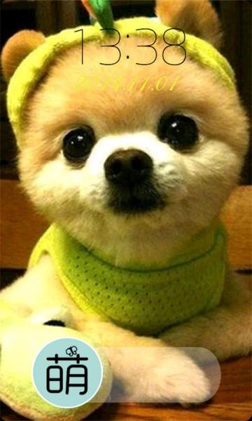 可爱狗狗萌宠卡通头像
