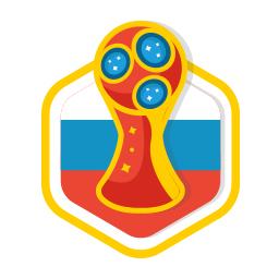 我在世界杯现场