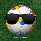 世界杯扫盲大作战