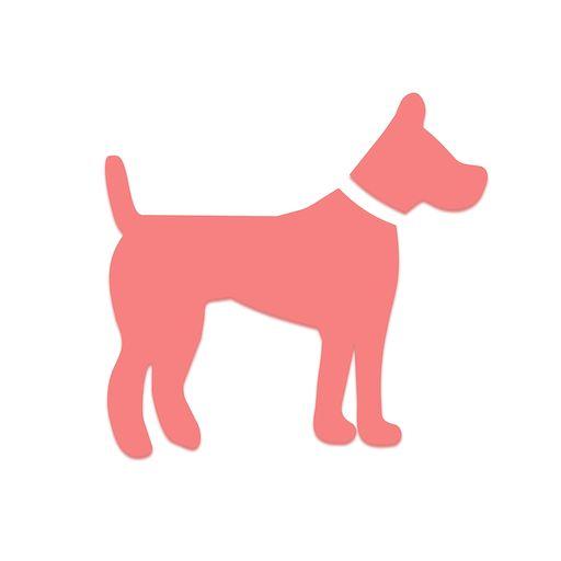 宠物领养送养平台
