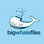 大白鯨旅游攻略
