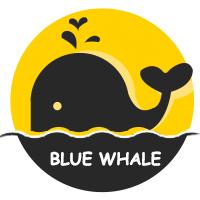 蓝鲸鱼回收